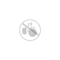 Rinti Rind 3 Schalen a`150 g